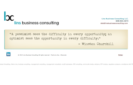 Lins Business Consulting website.