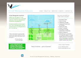 the Virtual Management Solutions website.
